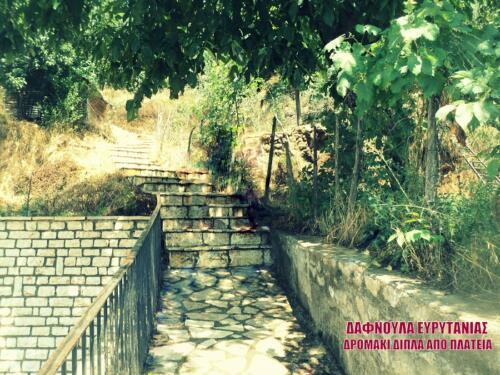 Δρομάκι στον οικισμό Δαφνούλα © Πολιτιστικός Σύλλογος Δαφνούλας