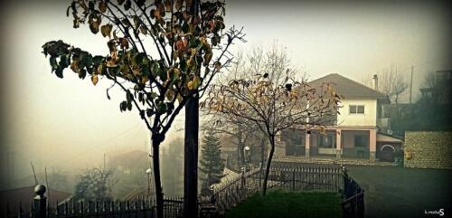 Οικισμός Δαφνούλας © Κώστας Μώκας