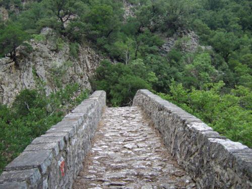 Στο γεφύρι της Βίνιανης © Γρηγόρης Αντωνίου