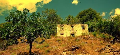 Ερειπωμένη οικία στην Παλιά Βίνιανη © Γρηγόρης Αντωνίου