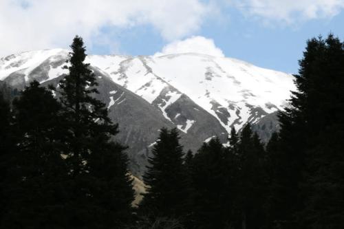 Χιόνια στην Πρασιά © Δημήτρης Παπαδιάς
