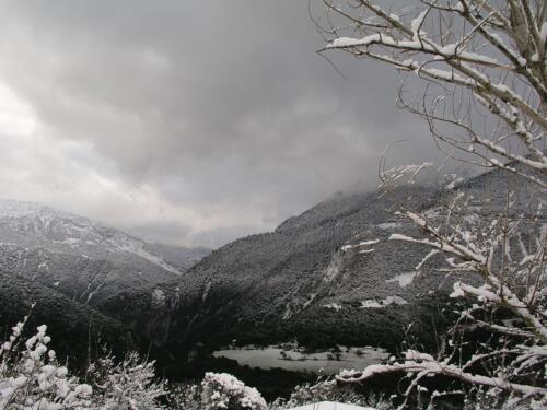 Δάφνη με χιόνια © Γιάννης Καστρίτσης